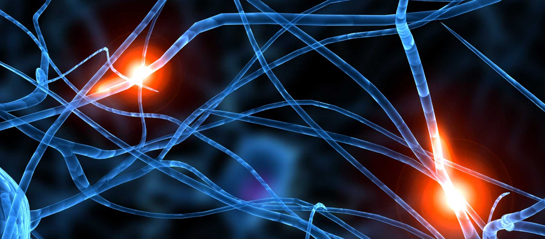 Brain & Nervous System - Participate in Research
