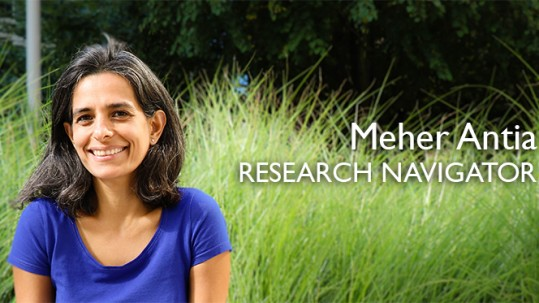 ITHS Research Navigator Dr. Meher Antia is a central point of contact for anyone conducting clinical or translational research in the five-state WWAMI region.