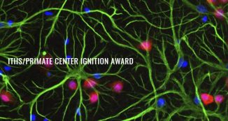 ITHS/Primate Center Ignition Award