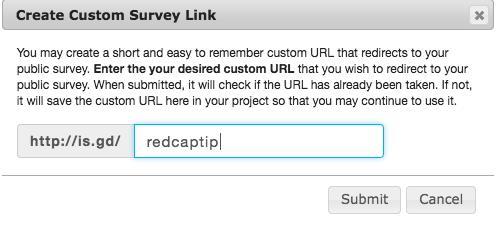 Enter your desired custom URL text.