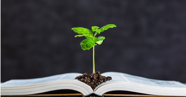 an open book is on a table and a plant shoot is growing out of a pile of soil in the middle of the book