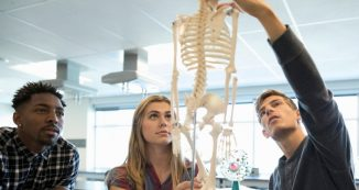 Funds for musculoskeletal research through the UW CLEAR Center